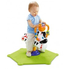 ZEBRA PULA PULA FISHER PRICE